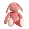 MiYim-Storybook-bunny