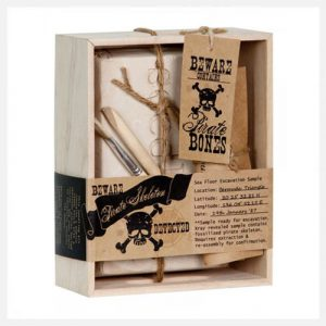 Seedling The Pirate Skeleton Excavation Kit